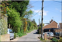 TQ8115 : New Cut, Westfield by N Chadwick