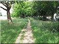 TQ4085 : Path near Capel Road by Roger Jones