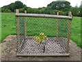 TL6857 : Newly Planted Tree by Keith Evans