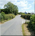 ST4594 : National Cycle Network route 42, Earlswood by Jaggery