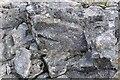 NM3997 : Porphyritic rhyolite by Ashley Dace