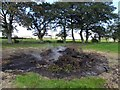 H9663 : Remains of a 12th July bonfire, Charlestown by Kenneth  Allen