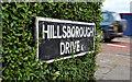 J3673 : Hillsborough Drive sign, Belfast by Albert Bridge