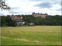 TQ1873 : Looking across Petersham Meadows towards Richmond Hill by Rod Allday