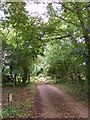 TM4363 : Footpath to Buckleswood Road & entrance to Fisher's Farm by Adrian Cable