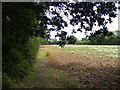 TM2653 : Footpath to Pound Lane by Adrian Cable