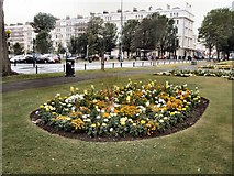 TQ2904 : Flowerbed - Palmeira Square by Paul Gillett