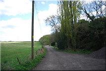 TQ8115 : 1066 Country Walk by N Chadwick