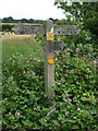TL6755 : Footpath sign by Keith Evans