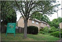 TQ2372 : Argyle Estate by N Chadwick