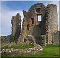 H3623 : Ruins of Crom Castle by C Michael Hogan