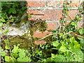 SU1525 : Bench Mark, Nunton Drove by Maigheach-gheal