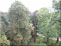 TQ1876 : Kew: The Royal Botanic Gardens: The Rhizotron and Xstrata Treetop Walkway by Nigel Cox
