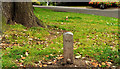 J3473 : Telephone cable marker, Belfast by Albert Bridge
