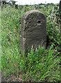 SJ8956 : Stone gatepost by Jonathan Kington