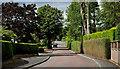 J3975 : The Cairnburn Road, Belfast (3) by Albert Bridge