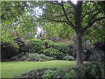TQ2977 : Telford Terrace Churchill Gardens Estate, Pimlico by PAUL FARMER
