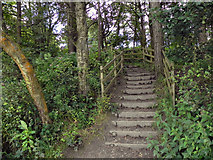 SD7217 : Steps to the Car Park by David Dixon