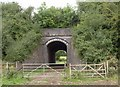 ST9583 : Railway bridge near Angrove Farm by Derek Harper