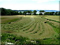NG3963 : Silage making above Uig Bay by Dave Fergusson