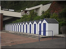 SX9265 : Beach huts on Oddicombe Beach by andrew auger