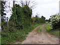 TM4160 : Bridleway to the B1069 Snape Road by Adrian Cable