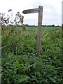 TM4360 : Sloe Lane Bridleway sign by Adrian Cable