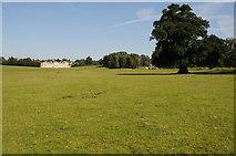 SP9532 : Woburn Park by Philip Halling