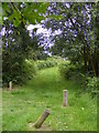 TM4358 : Sailors Path footpath to the A1094 Aldeburgh Road by Adrian Cable