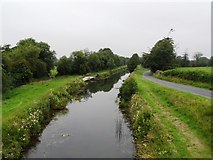 N5231 : Grand Canal from Toberdaly Bridge in Co. Offaly by JP