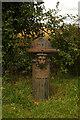 TL0962 : Pillar fountain, near Little Staughton by Julian Osley
