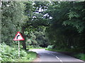 TQ4198 : Bend in the road, Epping Forest by Malc McDonald