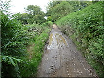 ST1990 : Footpath above the Sirhowy Valley by Jeremy Bolwell