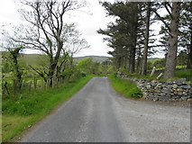 G6079 : Road at Bogagh Glebe by Kenneth  Allen