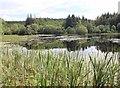 NR8786 : Kilmory Loch by David P Howard