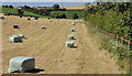 J4776 : Silage field near Newtownards by Albert Bridge