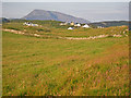 C0537 : Parkmore rural settlement with Muckish Mountain beyond by C Michael Hogan