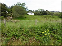 G7287 : Aighe Townland by Kenneth  Allen