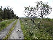 G7786 : Road at Crocknagapple by Kenneth  Allen