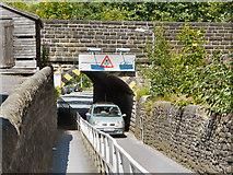 SE0125 : Thrush Hill Road Railway Bridge by David Dixon