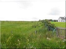 G7886 : Carrickatieve Townland by Kenneth  Allen