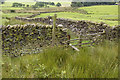 SD5747 : Fellside Access to Fiendsdale Head by Tom Richardson