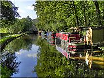 SD9926 : Rochdale Canal at Mayroyd by David Dixon