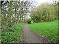 NT9951 : Footpath to Dock Road Tweedmouth by peter robinson