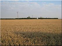 TA0116 : View towards Manor Farm by Jonathan Thacker