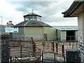 SN9768 : Rhayader livestock market by Andrew Hill
