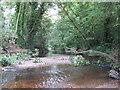 TQ4188 : River Roding by Roger Jones