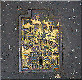 J3271 : Fire hydrant cover, Belfast by Rossographer