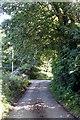 SW7117 : The lane leading to Erisey Barton by Rod Allday
