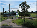 TQ3567 : Tram crossing in South Norwood Country Park by Stephen Craven